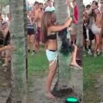Fille-arbre-bourree-Festival-Music
