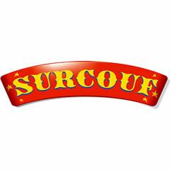 surcouf_redressement_judiciaire_lille_paris_informatique