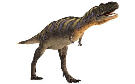 dinosaur_1622654c