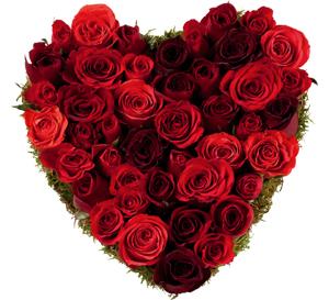 Amoureux et ivre, il braque un fleuriste pour des roses