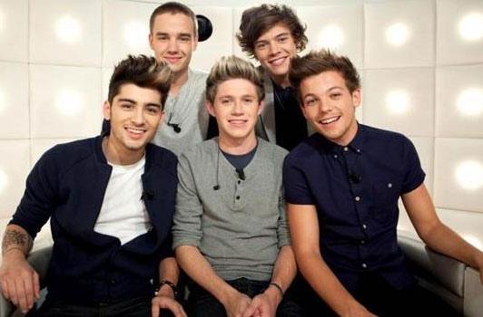 Danse-avec-les-stars-3-les-One-Direction-seront-sur-le-plateau-_portrait_w532